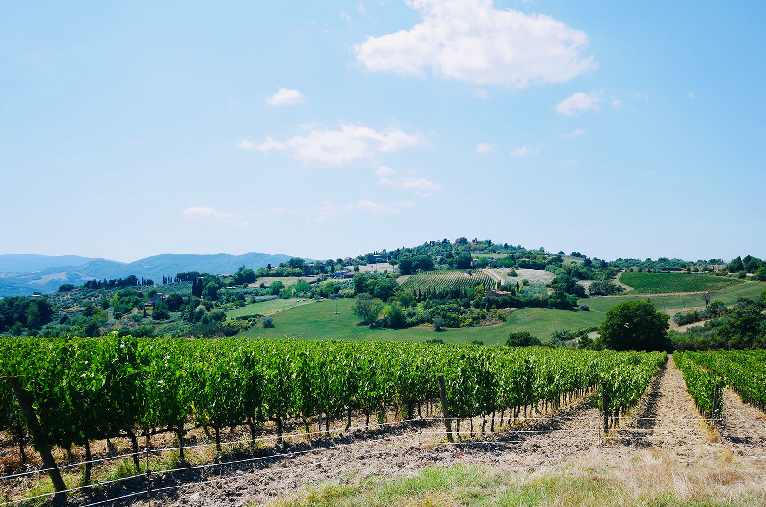 Typical Tuscan view in Chiani valley.