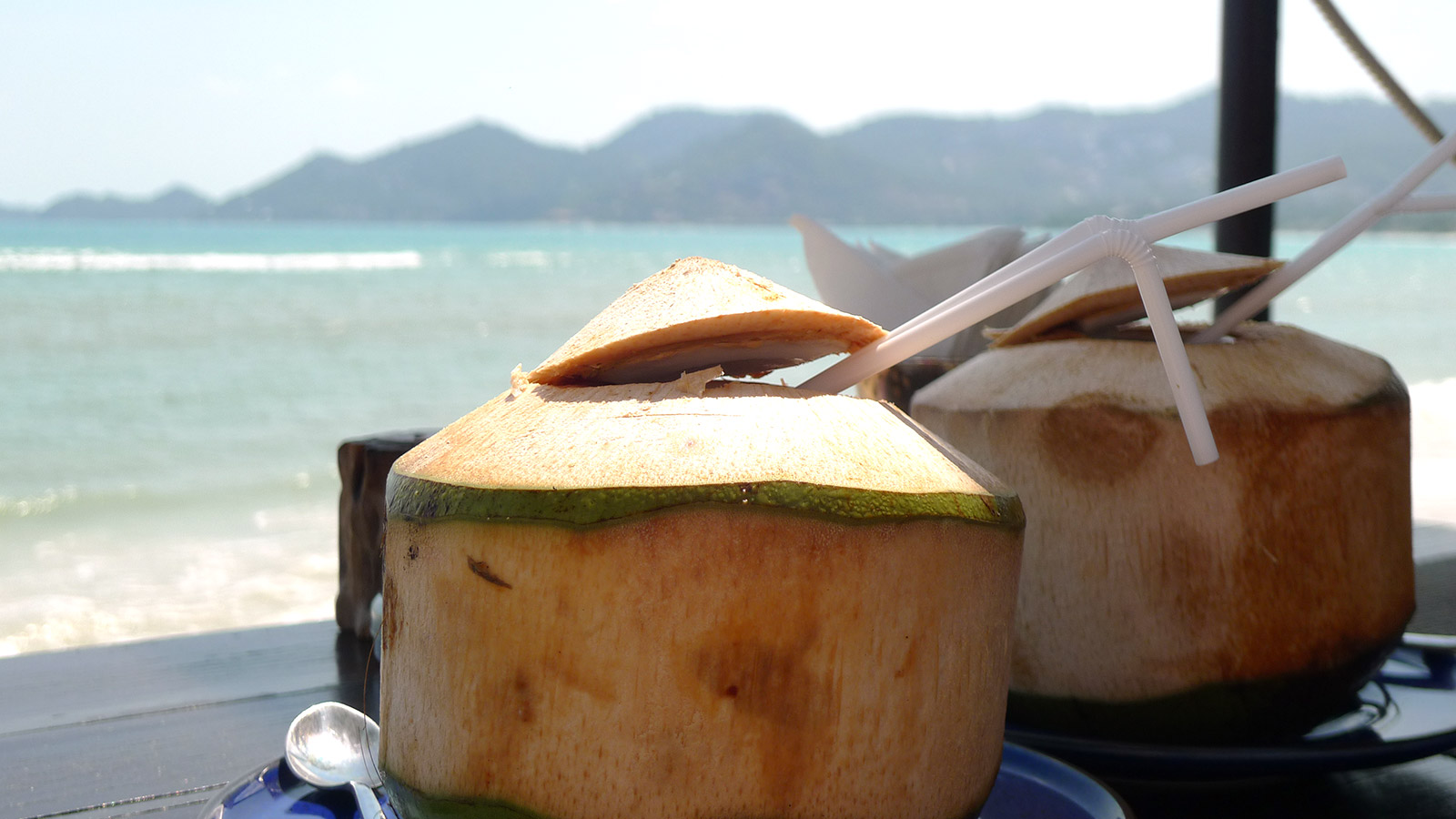 Coconuts in front of the beach