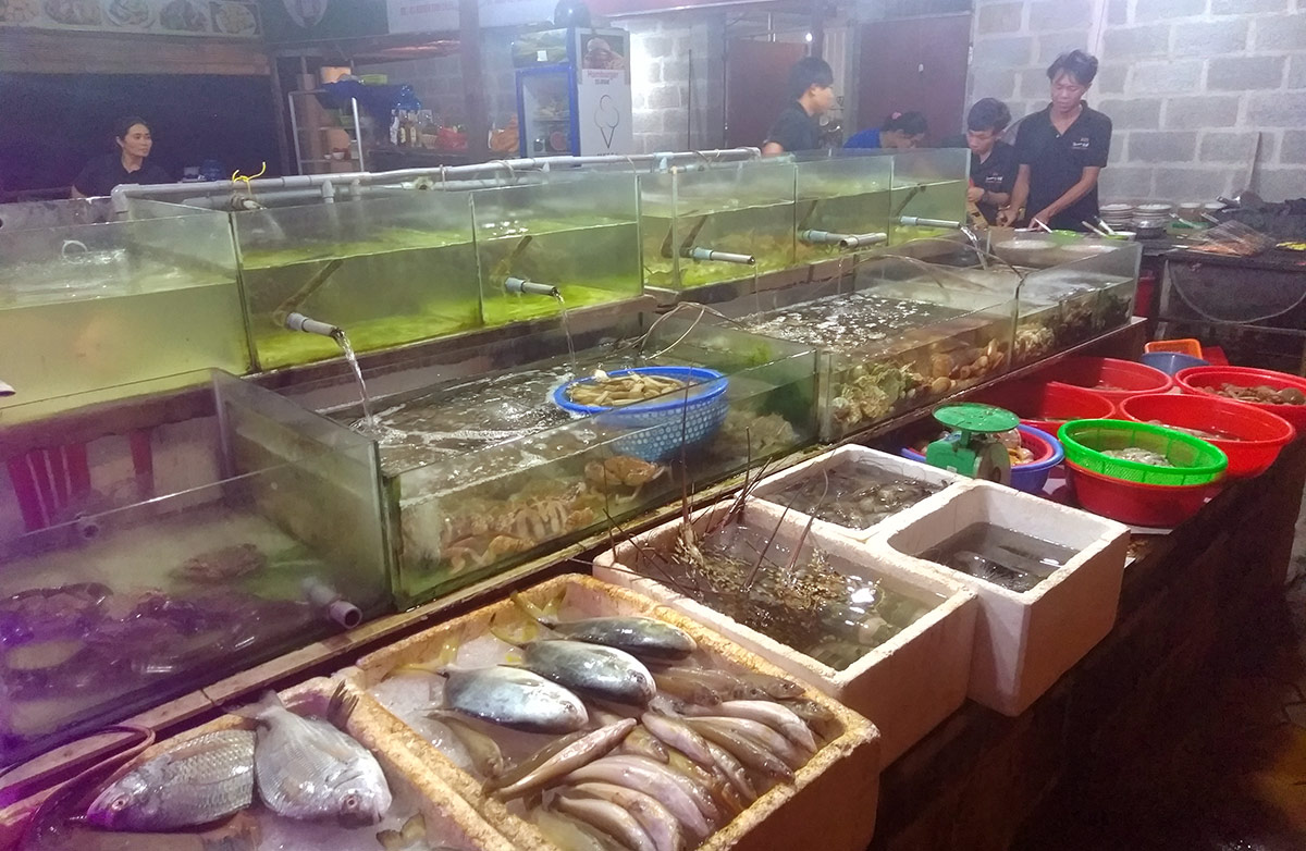 Fresh seafood waiting to be eaten at a restaurant.